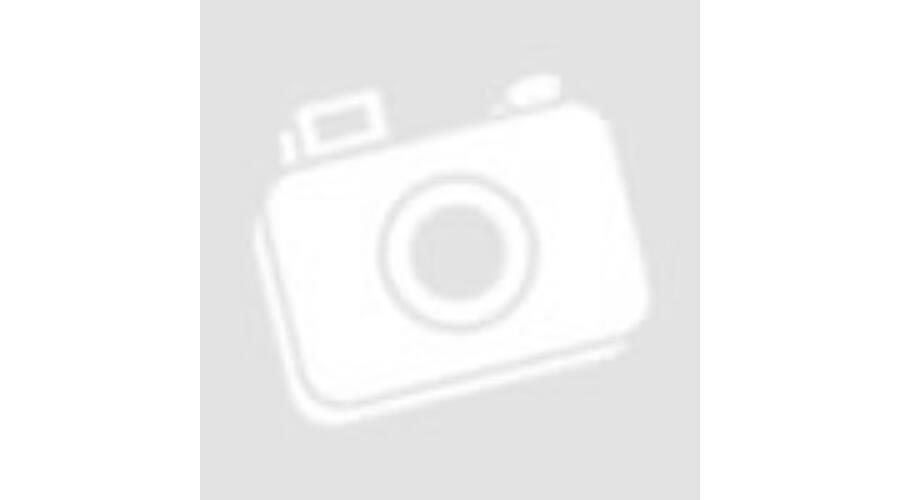 Nike Hyperdunk X Low kosárlabda cipő (AR0464 003) CSAPAT